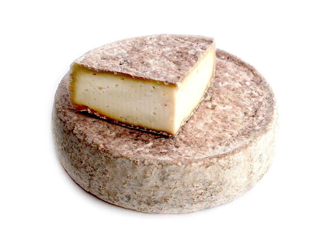 queso torozo
